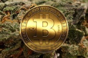 IBM Cannabis Blockchain