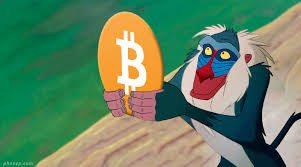 Roi Bitcoin