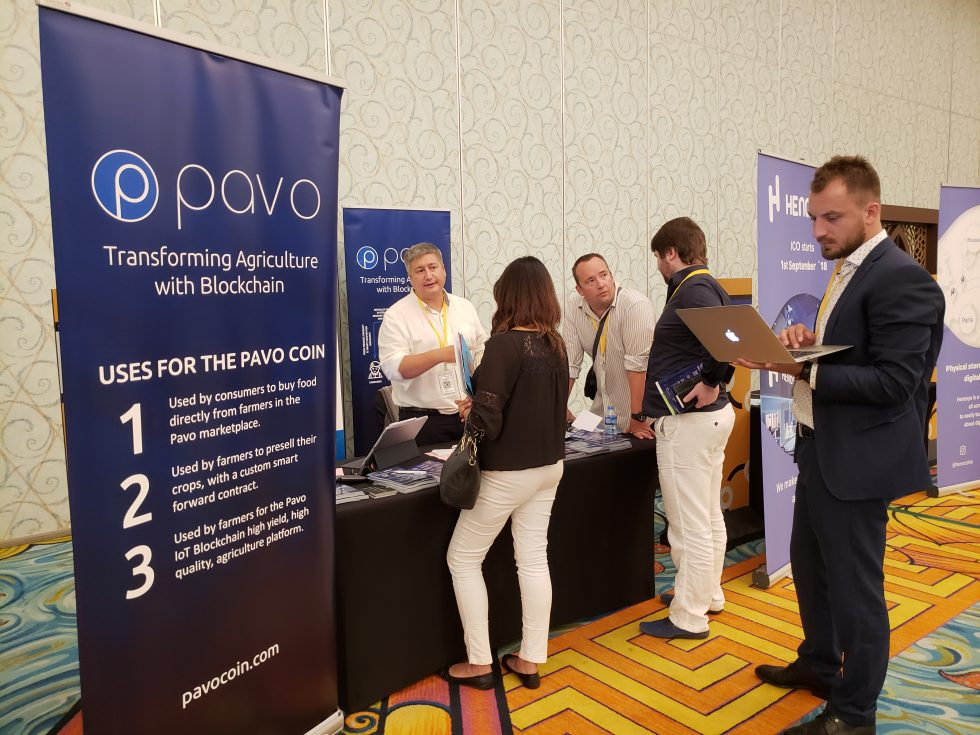 Pavo Dubai Summit 3