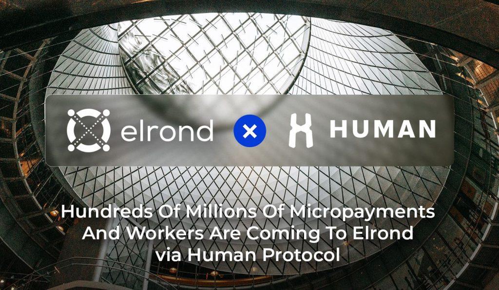 Elrond Humans partenariat