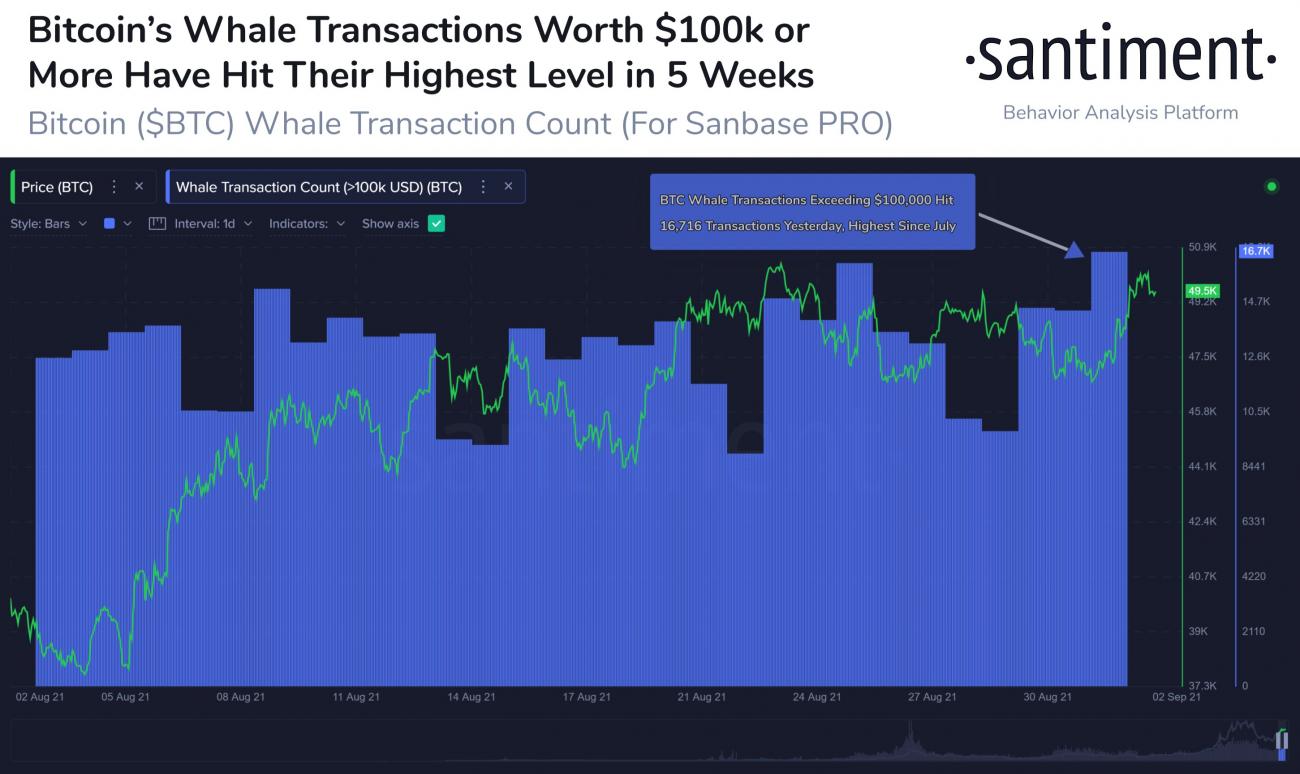 Transactions de plus de 100 000 dollars pour le Bitcoin au 4 septembre 2021